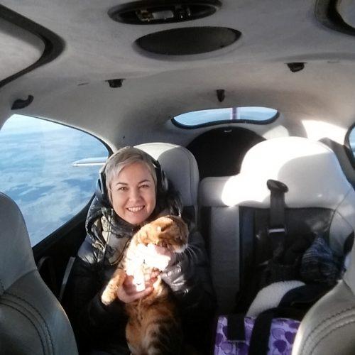 Přeprava koček letadlem